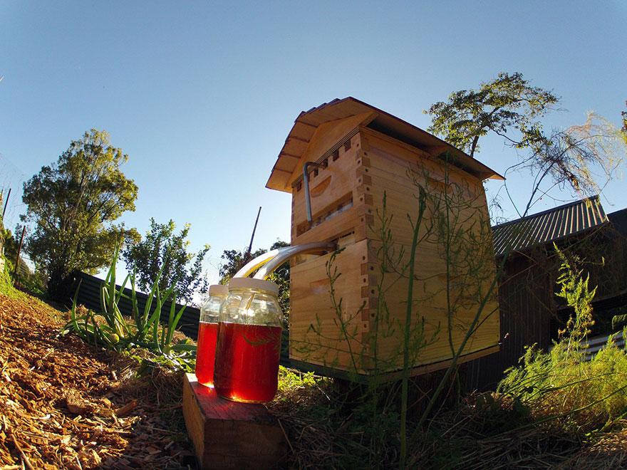 Colmenas de abejas artificiales