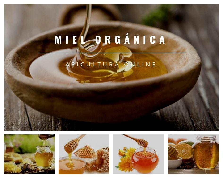Miel Organica propiedades