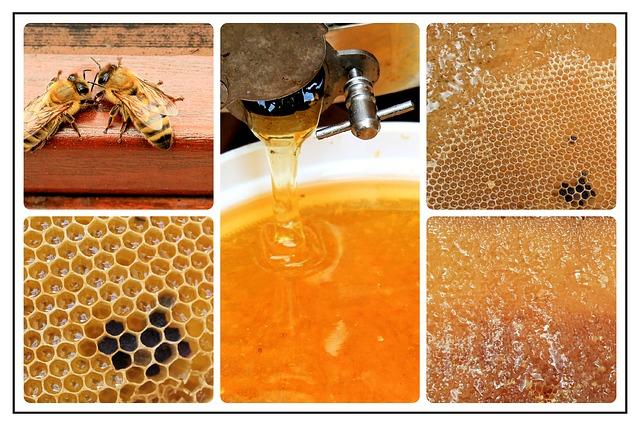 miel cruda, artesanal y ecológica