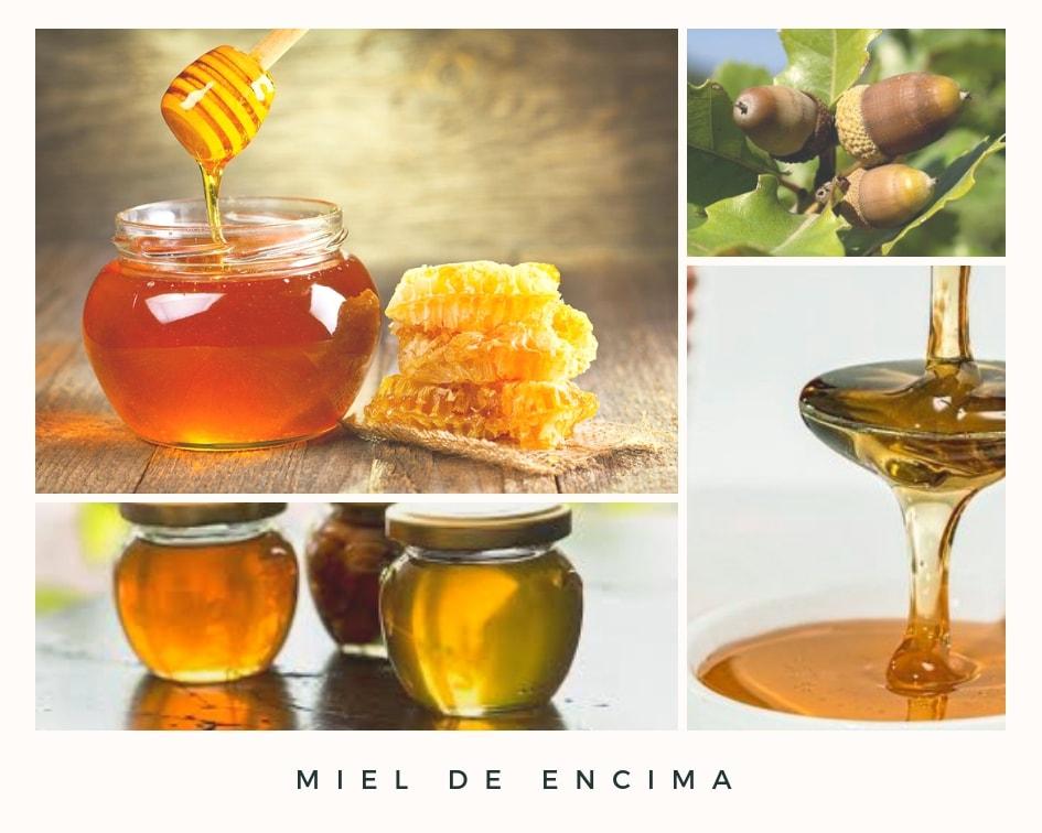 miel de bosque propiedades