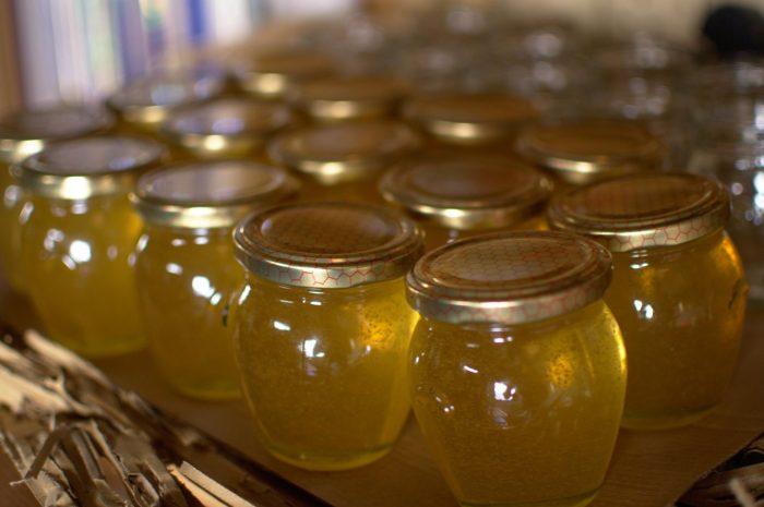 Miel Pasteurizada