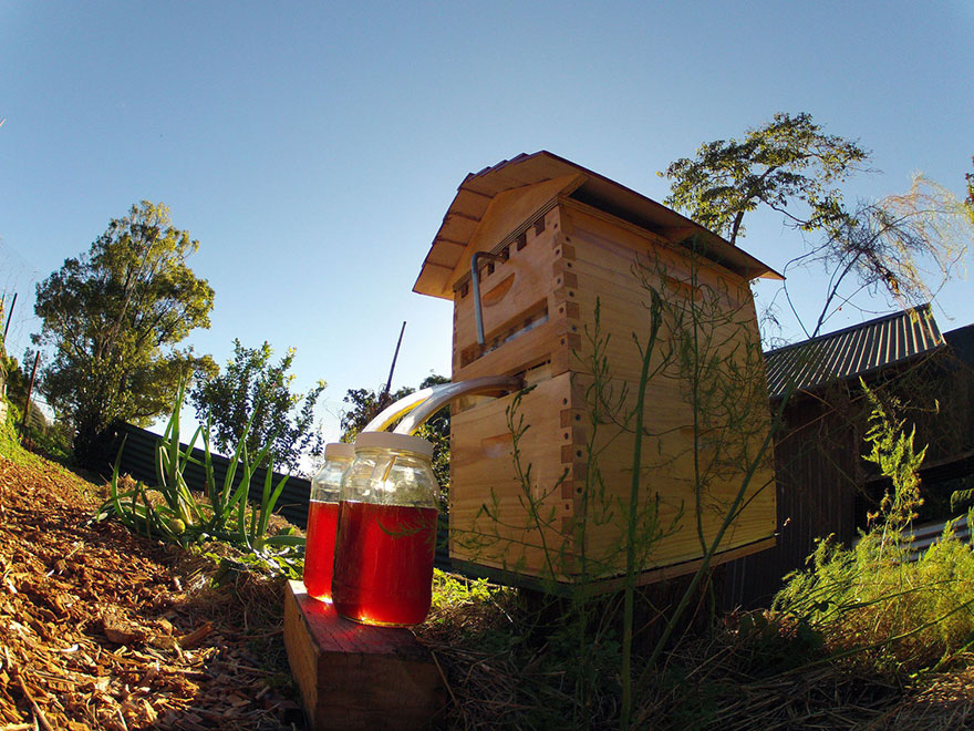 Colmenas-de-abejas-artificiales