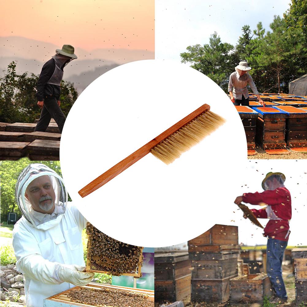 herramientas de la apicultura