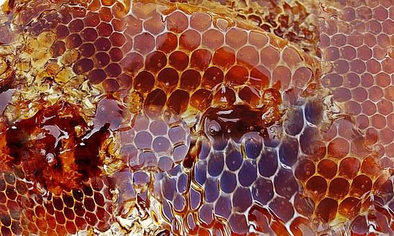 miel no pasteurizada