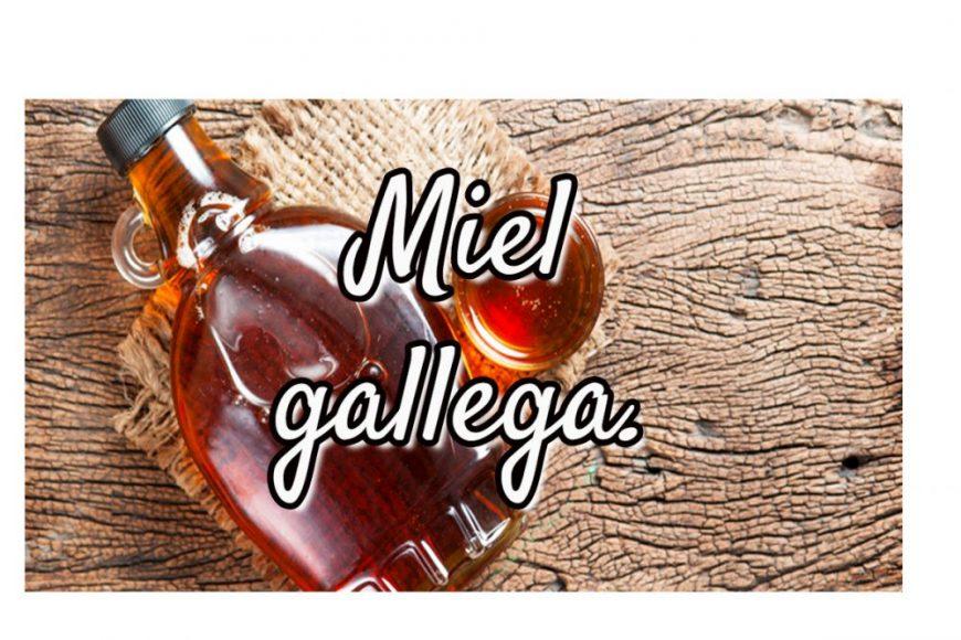 miel gallega destacada
